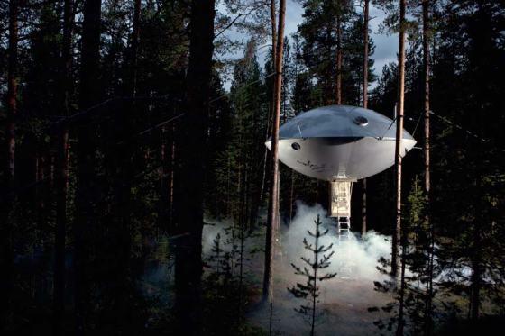 va_tree_houses_04_2413929k