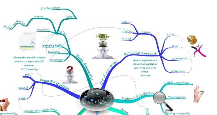 Thinkibility 6