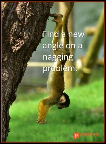 find-a-new-angle-on-a-nagging-problem-png1