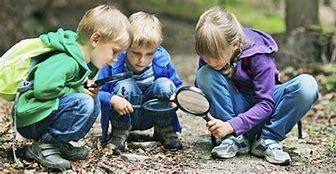 Afbeeldingsresultaten voor secondary education in nature
